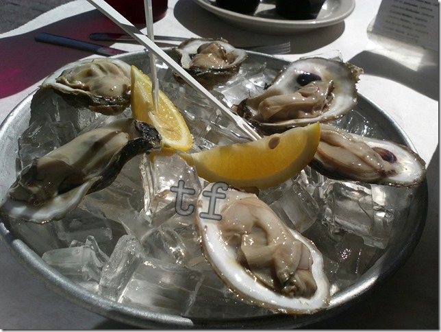 Half dozen Oyster on the Half Shell