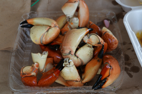 Stone-Crab-Claws.png